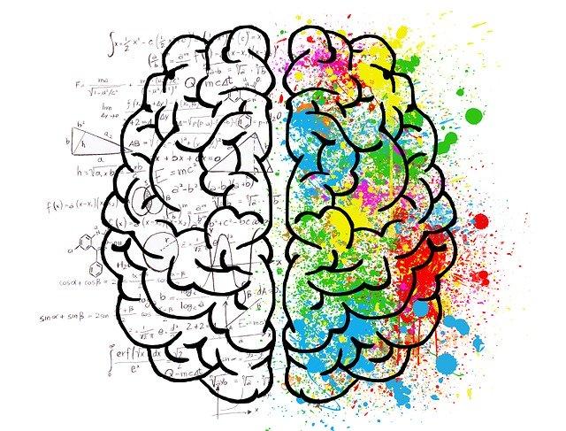 Slik trener du hjernen