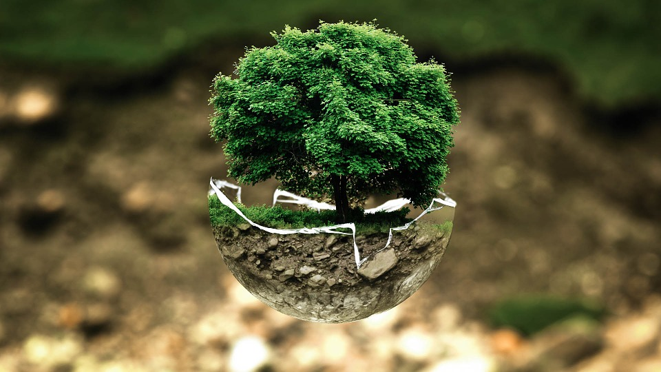 Miljø